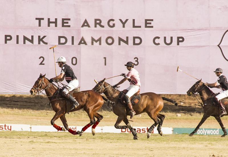 Argyle-Pink-Diamond-polo.jpg