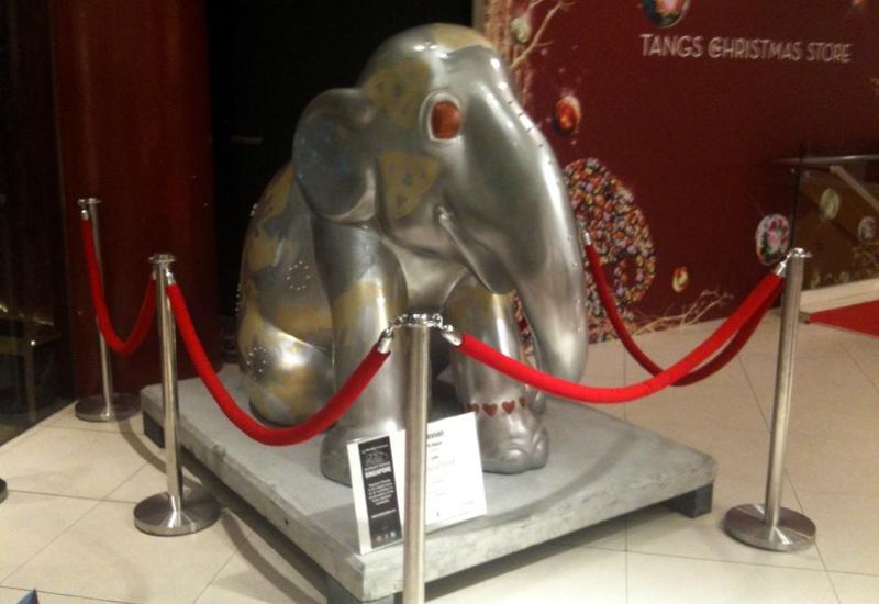 Yunnan-elephant.jpg