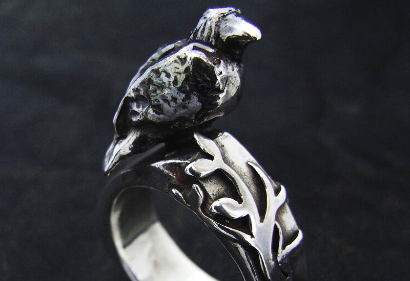 crow-tree-ring.jpg