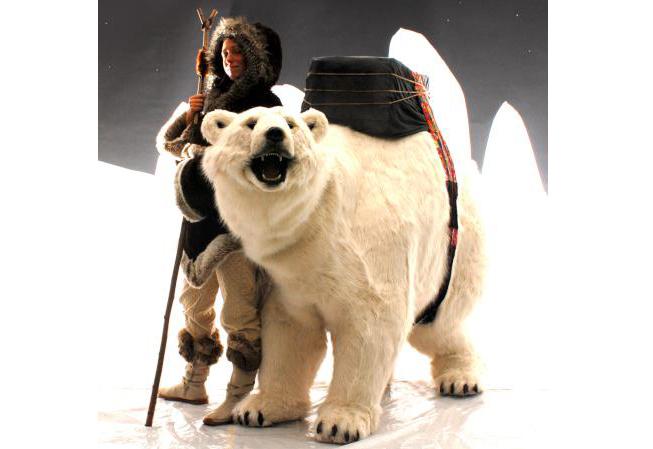 Arctic PS