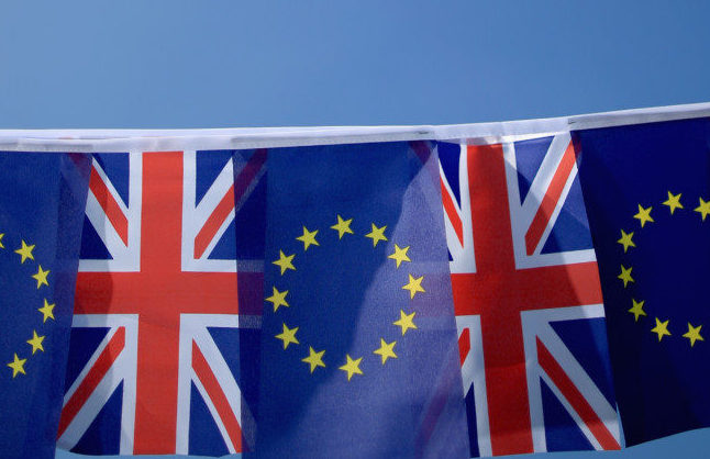 EU Referendum – Signage And Symbols